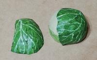 第五作「モンシロチョウの交尾拒否」の材料作り3 キャベツの玉と地面の製作 - むしジオラマ