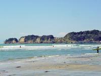 鎌倉 材木座海岸で貝ひろい - かさぶたろぐ