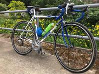 ロードバイクで印旛方面へ - pottering