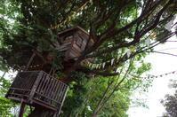 椿森コムナ千葉県千葉市中央区椿森/イベントスペース ツリーハウス カフェ - 「趣味はウォーキングでは無い」