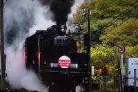 蒸気機関車山口号 - 信仙のブログ