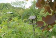 ターシャの庭で 3 - 気ままにお散歩