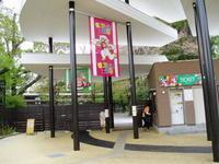 羽村市動物公園のカピバラ。 - 馬耳Tong Poo