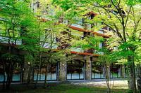 新緑(奥入瀬渓流ホテル) - くろちゃんの写真