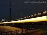 「桜橋からスカイツリー」 - こころ絵日記 Vol.2