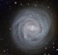 ハッブル宇宙望遠鏡が捉えたかみのけ座の美しい渦巻銀河NGC4921の最新画像 - 秘密の世界        [The Secret World]