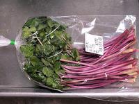 ハマボウフウ(野菜) - しらこばとWeblog