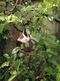 鎌倉心景「嵐」 - 海の古書店