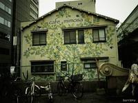 通りすがり - NA*GO*美PHOTO