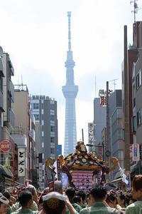 ソイヤ~オイサ~掛け声高らか三社の神輿 - 旅プラスの日記