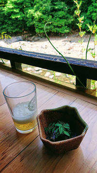 京都高山寺『鳥獣人物戯画』 - 気ままな一日