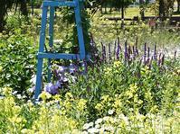 初夏の花壇 - park diary