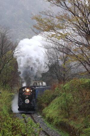 雨に濡れる新緑と白煙 - 2019年春・釜石線 - - ねこの撮った汽車