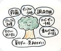 木の持つ効果 - クボタ住建スタッフブログ