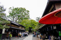 🍀 新緑 2019 -5- 今宮神社 🍀 - ◆Akira's Candid Photography