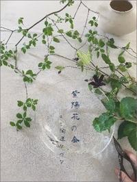 月草sousow「紫陽花の会」2019 - なづな雑記