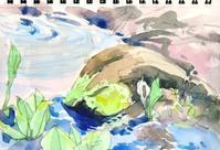 水芭蕉が咲いたよ - ryuuの手習い