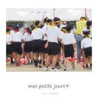 中学校の体育祭 - 小さな日々*