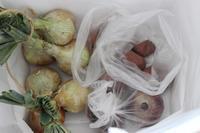 オーダーのお渡し&新鮮な野菜 - Petit mame