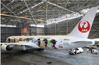 心躍る【嵐】塗装ジェット機のデビューのニュース - ハチドリのブラジル・サンパウロ(時々日本)日記