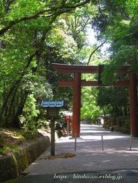 奈良石上神宮の鶏 - 暮らしを紡ぐ