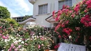"""春と秋、1年にそれぞれ1ヶ月間だけ営業のカフェ「La Vie en Rose」, Cafe """"La Vie en Rose"""" -"""