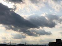 5月17日〜の出来事 - 猫多摩散歩日記 2