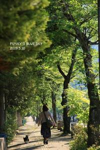 旅の朝 - FUNKY'S BLUE SKY