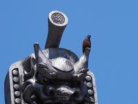 仁徳天皇陵古墳を一周する記事公開のお知らせ身近な野鳥も - 模糊の旅人