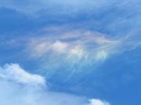 彩雲とアーク小紫陽と白糸草 - 花追い日記