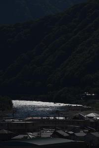 光る川面 - (=^・^=)の部屋 写真館