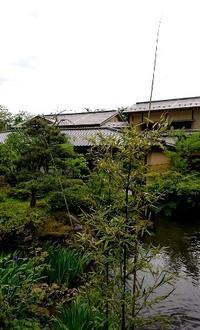 クロチクさん - 金沢犀川温泉 川端の湯宿「滝亭」BLOG