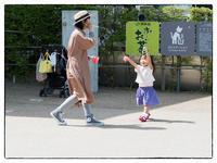 大阪ウオーク - Hare's Photolog