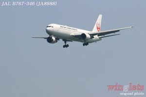 '19年 川崎・浮嶋公園レポート ・・・ JAL/JA8988 - winglets