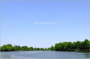 水元公園にて - りゅう太のあしあと