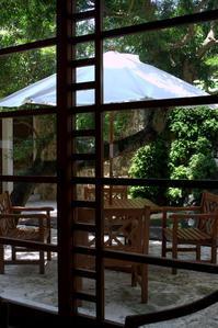 うりずんの風の中でマロードで心潤うひととき - 京都ときどき沖縄ところにより気まぐれ