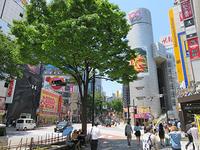 5月23日㈭の109前交差点 - でじたる渋谷NEWS