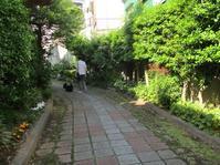 路地散歩と - Macんち日記