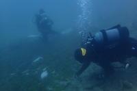 19.5.24朝から晩まで - 沖縄本島 島んちゅガイドの『ダイビング日誌』