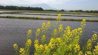 田舎の風景 - ふうりゅう日記