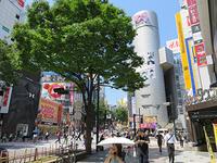 4月24日㈮の109前交差点 - でじたる渋谷NEWS