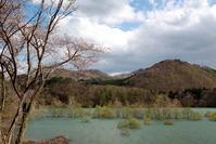 西和賀町錦秋湖に沈む新緑その2 - 日本あちこち撮り歩記