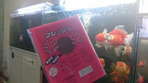 冷凍赤虫は、さんみで!! - ~today's memory~