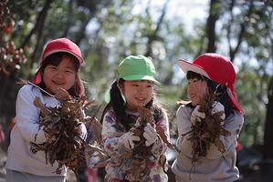 生活写真販売のお知らせ。ー終ー - 陽だまりの小窓 - 菊の花幼稚園保育のようす