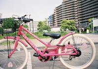 自転車 / FLASH FUJICA Date - minamiazabu de 散歩
