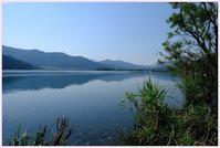 初夏の琵琶湖湖北 - OWLの飼育箱