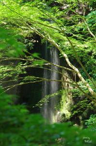 天理市滝本町桃尾の滝 - ぶらり記録 2:奈良・大阪・・・