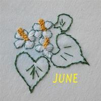 サイドバー/ロゴ画像2019年6月 - そらいろのパレット