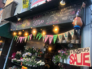 夏中咲く花たちの、セール - 目黒区 都立大の 花屋  moco    花と 植物で楽しい毎日     一人で全力で営業中