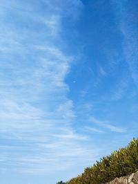 美しい雲とアカショウビンの鳴き声。 - なんくるないさ~、ワンッ!!